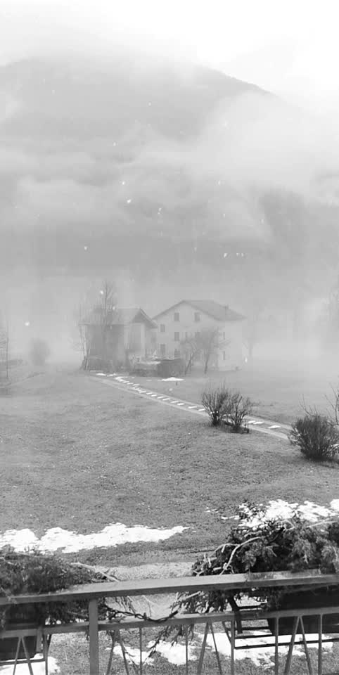 #foggy #december #nature #winter #colddays #neve #natale #christmas #viewfrommywindow #vintage #fog
