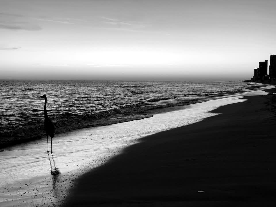 Christmas Eve views. #beach #sunset #beachxmas #gulfshores #alabama