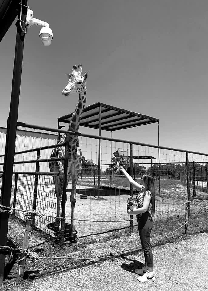 My tall friend 🦒 #giraffe #animal #sanctuary #unify #444 #summer #adventure #fun #love #nocomment